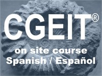 Haven't you downloaded our Intro to iTTi+UDIMA's CGEIT online course, Spanish / Español, yet?